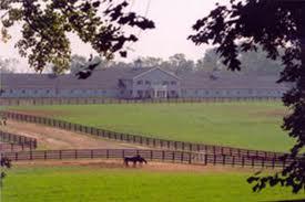 Perretti Farms, boegbeeld voor de paardenracerij in New Jersey, is failliet