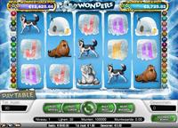 Icy Wonders videoslot bij online casino