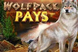 Online gokken op je telefoon Wolfpack Pays
