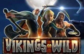 Online Vikings go Wild spelen