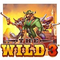 Online The Wild 3 spelen